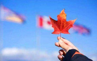 [新聞] 留學移民人數激增,2019年秋超57萬國際生在加拿大
