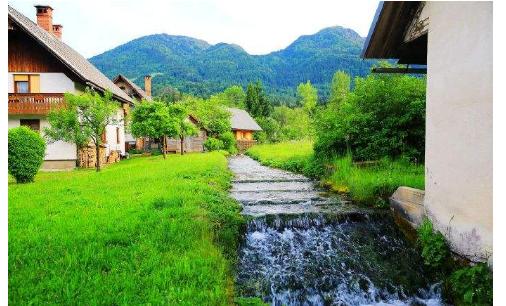 [新聞] 拋開喧囂,來斯洛文尼亞鄉村是一種什麼樣的體驗?